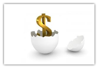 Dollar sign in an egg shell