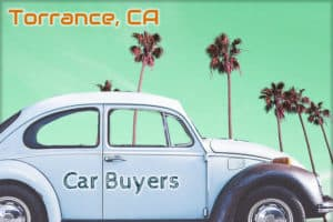 Palm Trees and a VolkswagonTorrance California Car Buyers
